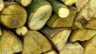 Stock Video Footage of Pile of Logs