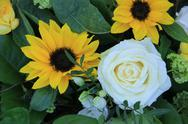 Yellow and white floral arrangement Stock Photos
