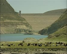 Drought in Cyprus - Kouris dam medium wide goats with low water and dam wall Stock Footage