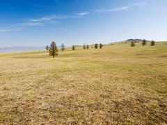 Mongolian steppe Stock Photos