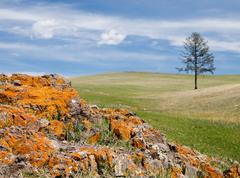 Mongolian steppe - stock photo