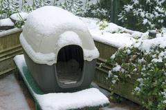 Koirankoppi alla lunta Kuvituskuvat