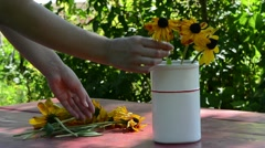woman hand dap soak rudbeckia flowers white vase outdoor table - stock footage