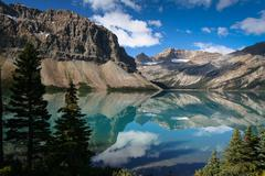 Bow lake at the banff nationalpark Stock Photos