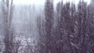 Stock Video Footage of BAD WEATHER (WINTER SNOWFALL)