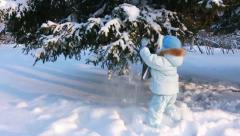 Child shakes off snow trees Stock Footage