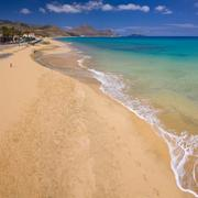 beach in porto santo - stock photo
