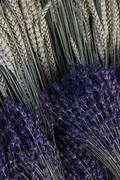 lavender and wheat bouquets - stock photo