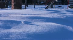 Small boots running in the snow. Stock Footage