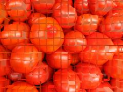 background of red ripe tomatoes - stock photo