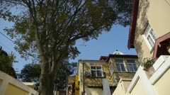 Panoramic of Tree with old house,blue sky & lush canopy at Europe German. - stock footage