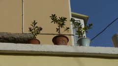 Flower pots on balcony & blue sky. Stock Footage