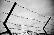 Stock Photo of barbwire