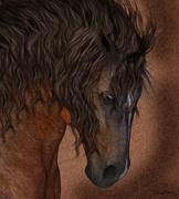 Equine Horse Greeting Card / Wall Art - stock illustration