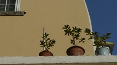 Flower pots on balcony & blue sky.looking up angle. Stock Footage