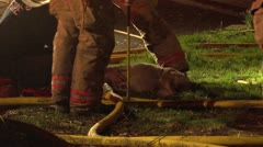 House fire dog rescue Stock Footage