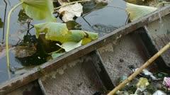Rubbish Garbage in Iron boat,Vast lotus pool,Fisherman clean lake in beijing. Stock Footage