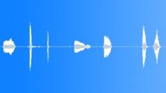 299_Toy_Squeak_01.wav Sound Effect