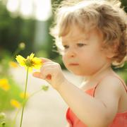 Child touching spring flower Stock Photos