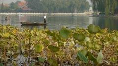 Fisherman on boat,Vast lotus leaf pool in autumn beijing & lake bridge. Stock Footage