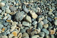 Beach stones - stock photo