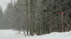 Stormy winter day Stock Footage