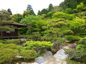 Stock Photo of japanese garden
