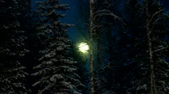 Magic full moon over the night winter forest. Stock Footage
