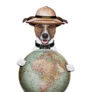 Travel globe compass dog safari explorer Stock Illustration