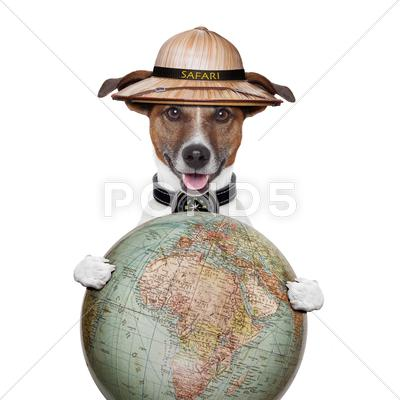 Stock Illustration of travel globe compass dog safari explorer