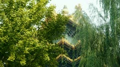 Roof of Forbidden City palace.Crown of ginkgo tree & willow. Stock Footage