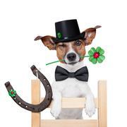 chimney sweeper dog - stock illustration