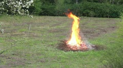 Fire on the field - burning branches and brushwood Stock Footage