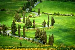 Tuscana landscape - road serpentines Stock Photos