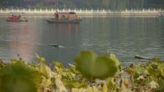 Vast lotus leaf pool in autumn beijing & lake railings. Stock Footage