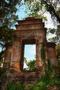 Old ruined doorway in a forest Stock Photos