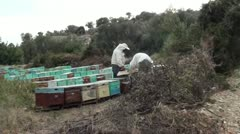 Beekeepers collect honey Stock Footage