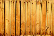 Stock Photo of wood texture