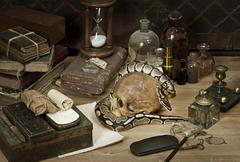 Alchemy still life with royal python Stock Photos