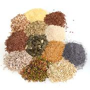 large assortment of edible seeds - stock photo