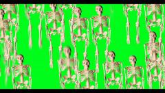 Funny Skeleton Video Transition Stock Footage
