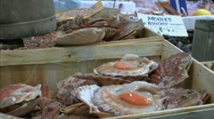 Shellfish Shopper POV Stock Footage