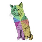 isolated sitting multicolored cat on white - illustration - stock illustration