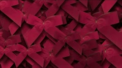 Red bowknot rosette chrismas holiday decoration gift background. Stock Footage