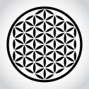 Stock Illustration of flower of life symbol - illustration