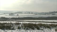 Pan of Snow laden farmlamd on Dartmoor with sheep Stock Footage