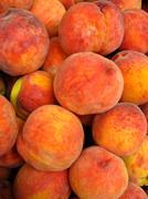 Many bright tasty peaches Stock Photos