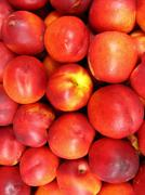 A lot of red nectarines Stock Photos