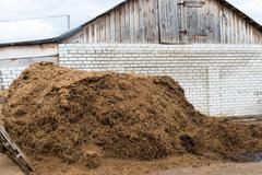 Cow dung as a natural fertilizer Stock Photos