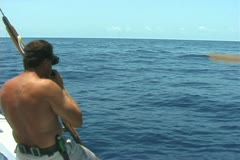 Bluewater Spearfishing - stock footage